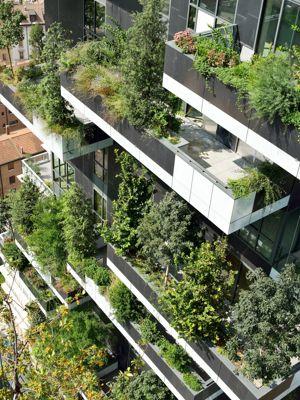 Ecologie - projet écologique, un hectare de forêt planté sur deux tours à milan - Les Doigts Fleuris