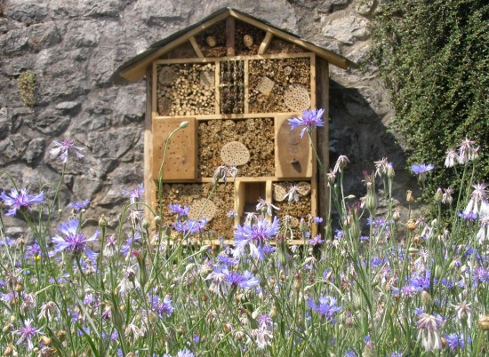 Astuces jardin en hiver - Hotel à insectes - Les Doigts Fleuris