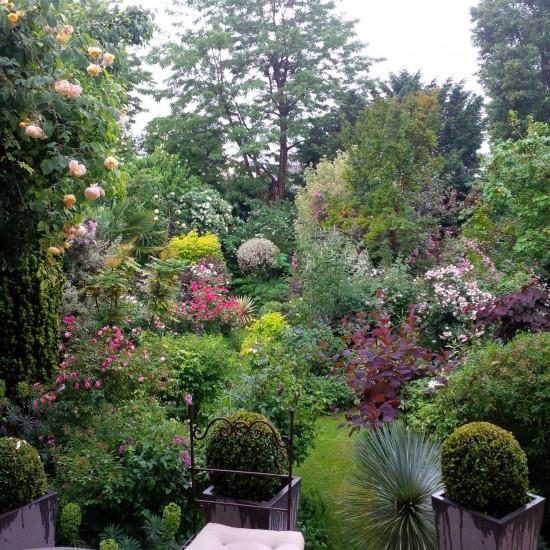Visitez Le Jardin De Fernanda Voulgaropoulos