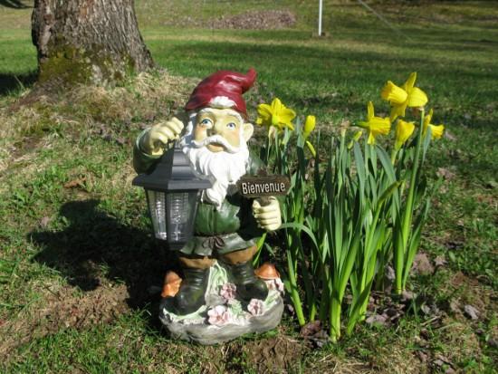 Pourquoi les nains de jardin - Les Doigts Fleuris