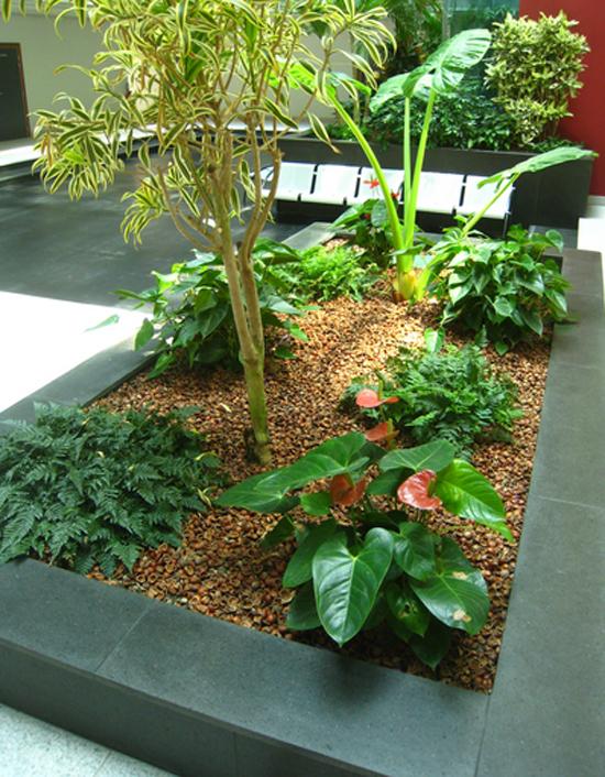 Tout pour le jardin - Paillage Végétal - Les Doigts Fleuris
