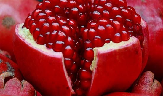 Les Plantes Médicinales : La Découverte Des Joie De L'amour