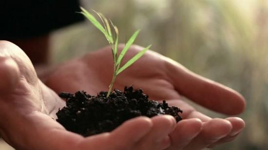 Mettre Les Mains Dans La Terre Rend Heureux Et Intelligent ! - Les Doigts Fleuris