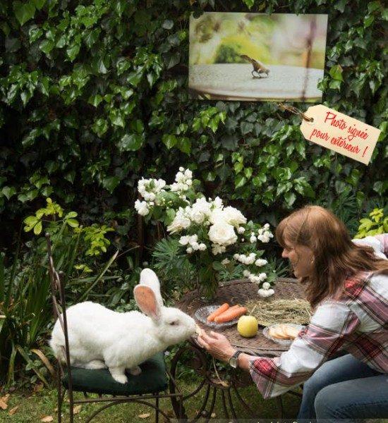 Mon Lapin Géant, Bobby De La Biscotte Et Son Petit Déjeuner