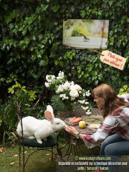 Le petit déjeuner de Bobby de la Biscotte, lapin des Flandres - Les Doigts Fleuris