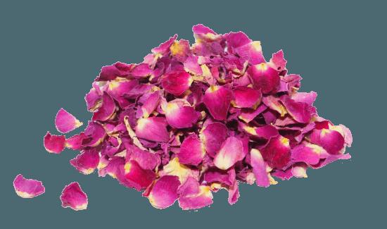 Les Roses Source De Bien-être - Les Doigts Fleuris