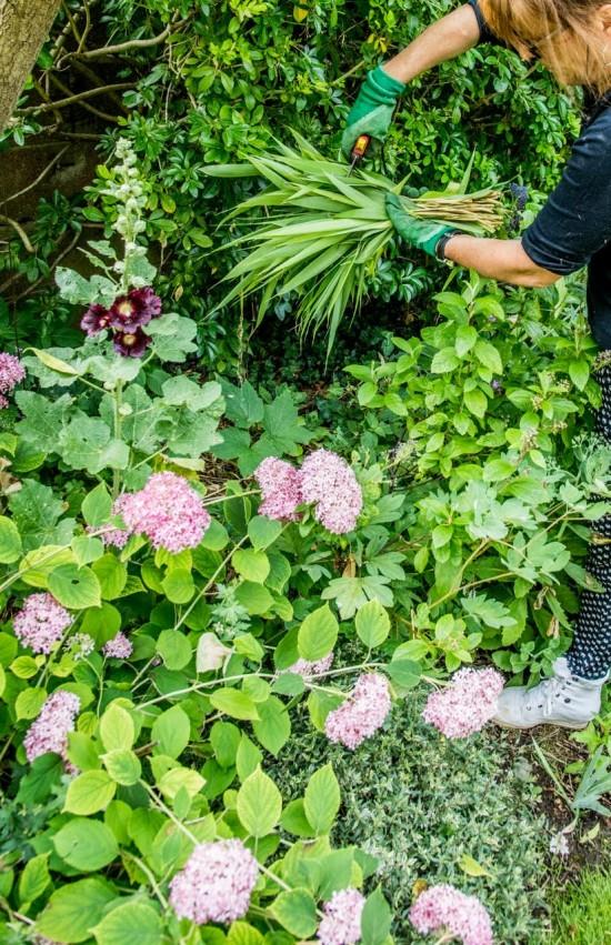 Entretenir son jardin, les gestes et astuces simples ! - Blog Jardin