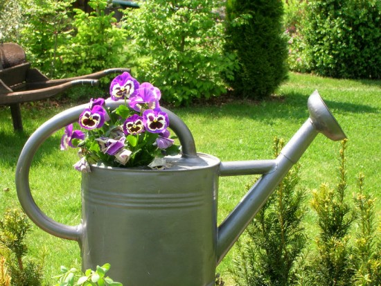 Astuces Jardin - Les Doigts Fleuris