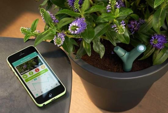 Un Capteur Intelligent Pour Vos Plantes, Le «flower Power»