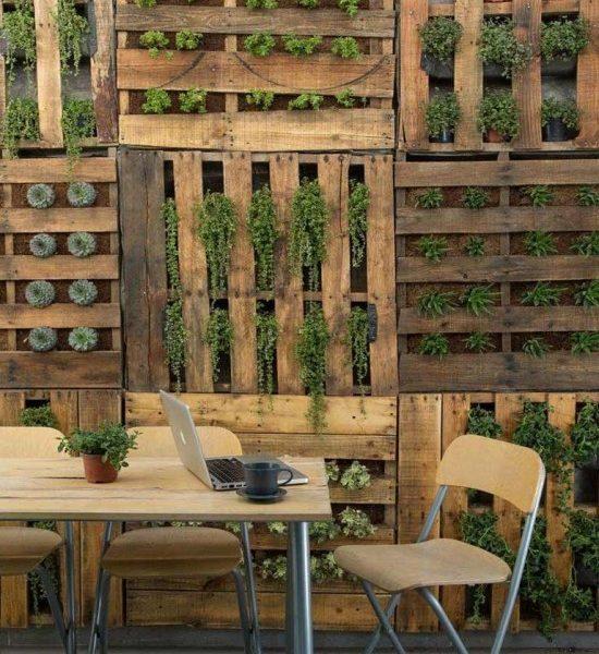 Un Mur Végétal Fait Maison Et à Moindre Frais !