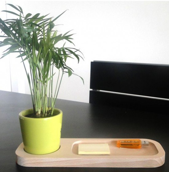 L'énergie Positive, 10 Plantes Qui La Diffusent…
