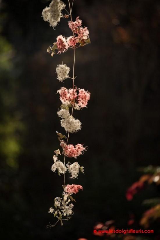 Guirlande de Noël argentée et rouge en Clématite Sauvage - Les Doigts Fleuris