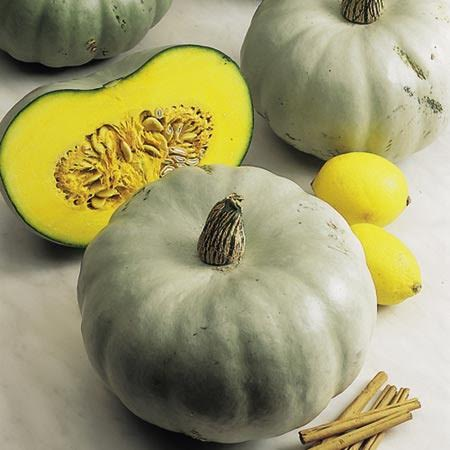 courge-crown-prince