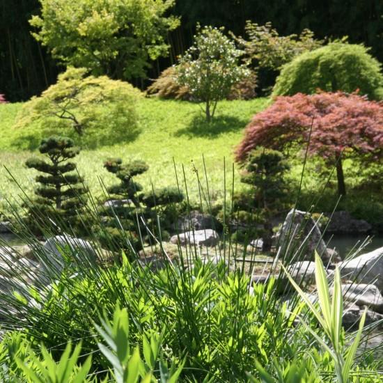 Feng-Shui, Apprenez Les Bases Pour Créer Votre Jardin !