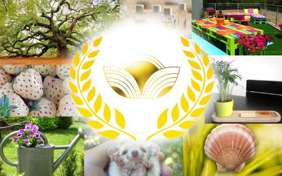 Jardin: Le Top 10 Des Articles Le Plus Appréciés Par Les Jardiniers En 2015
