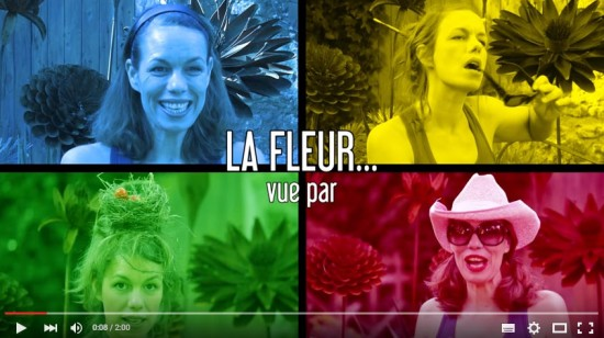 Humour Au Jardin: La Bimbo Aime La Fleur En Plastique