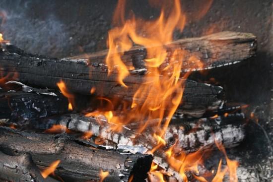 Les cendres de feu de cheminée au jardin - Les doigts fleuris