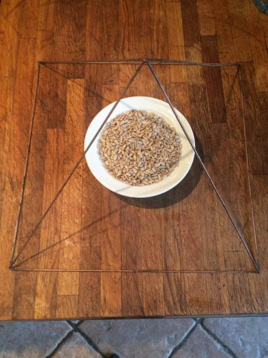 Electroculture, une pyramide pour activer les graines - Les Doigts Fleuris