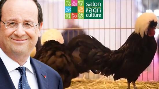 La Basse Cour Récompensée Par François Hollande !
