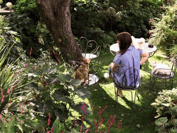 Blog Jardin «les Doigts Fleuris», Un Nouveau Site