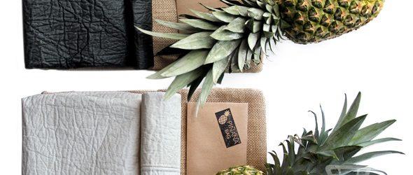 Cuir Végétal D'ananas, Une Alternative écologique