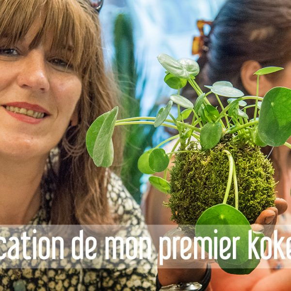 Kokedama Un Art Végétal Venu Du Japon